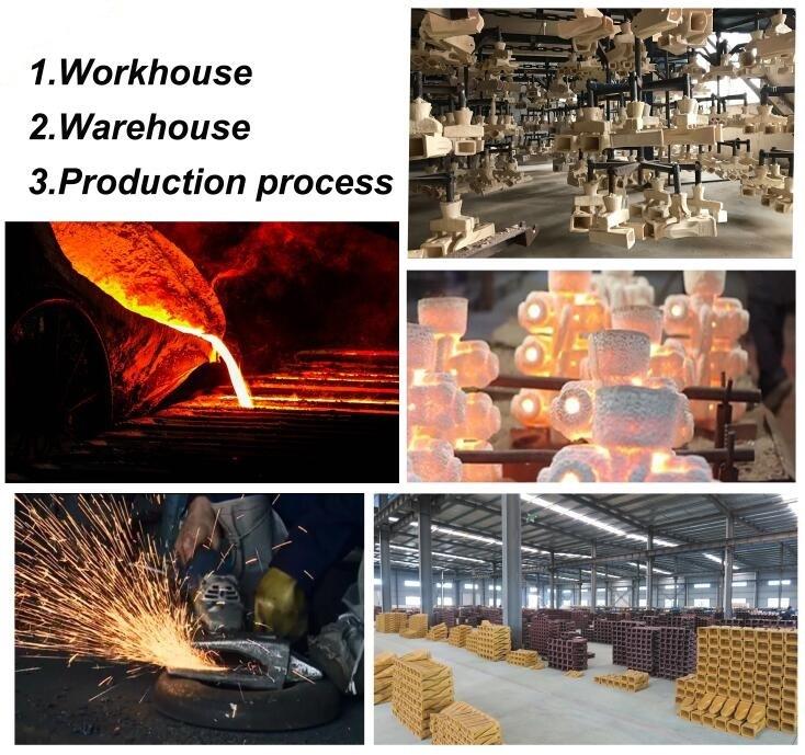 EBI production process3