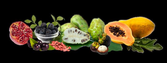 papaya recipes for your baby